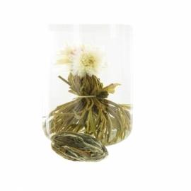 Fleur de Thé PERLE DE ROSEE - Unité