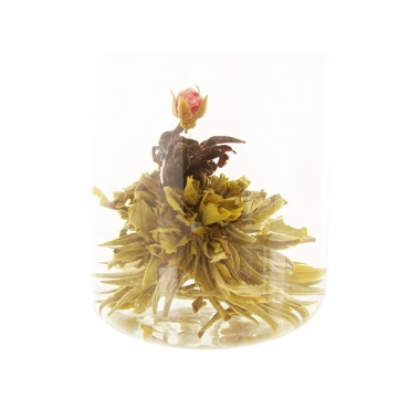 Fleur de Thé ROSA CANDIDA - Unité